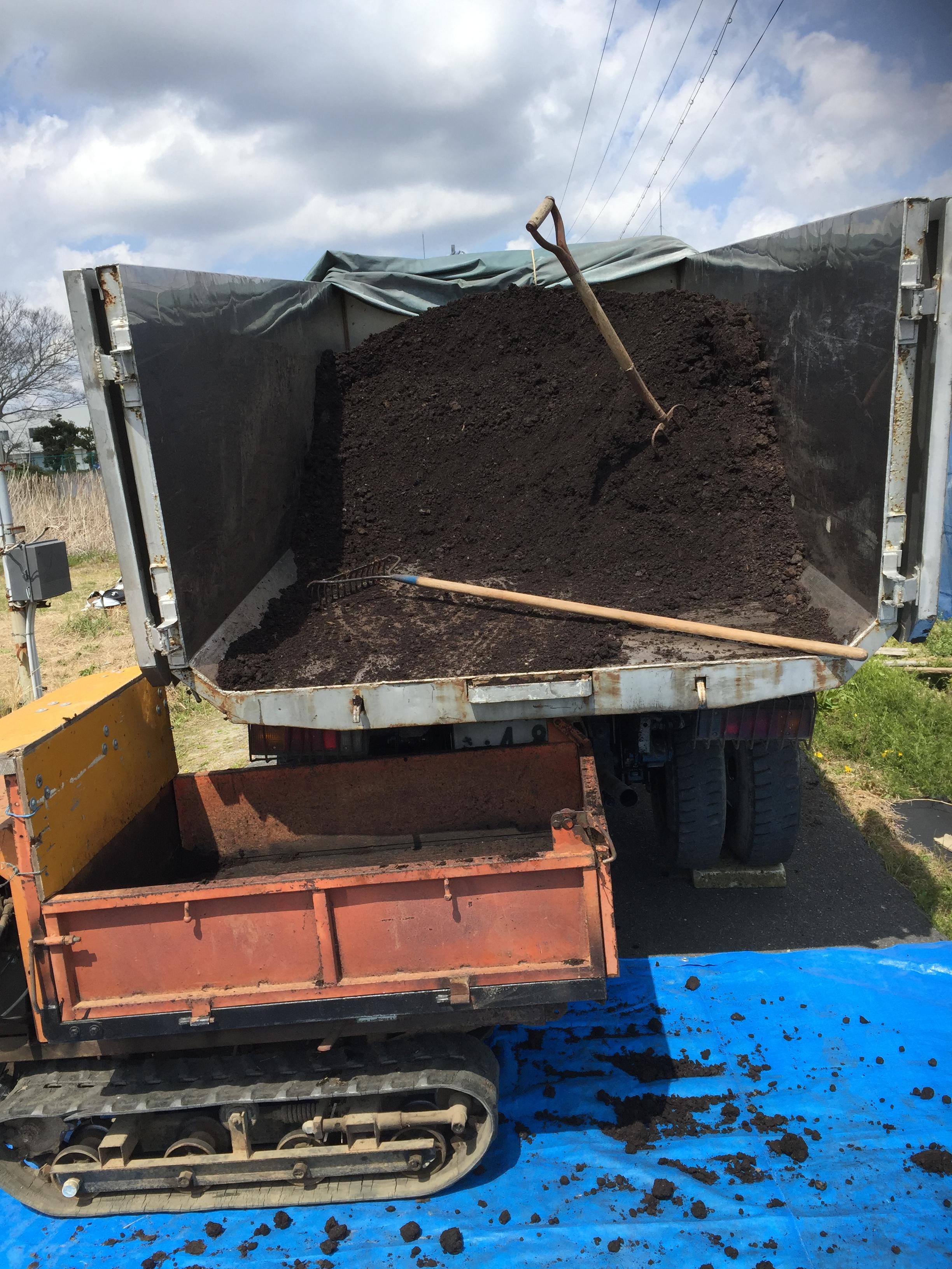 土作り堆肥投入
